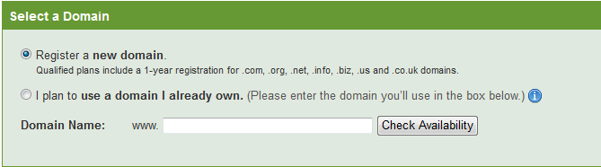 How Do I Create a Website for My Business, Registering domian name